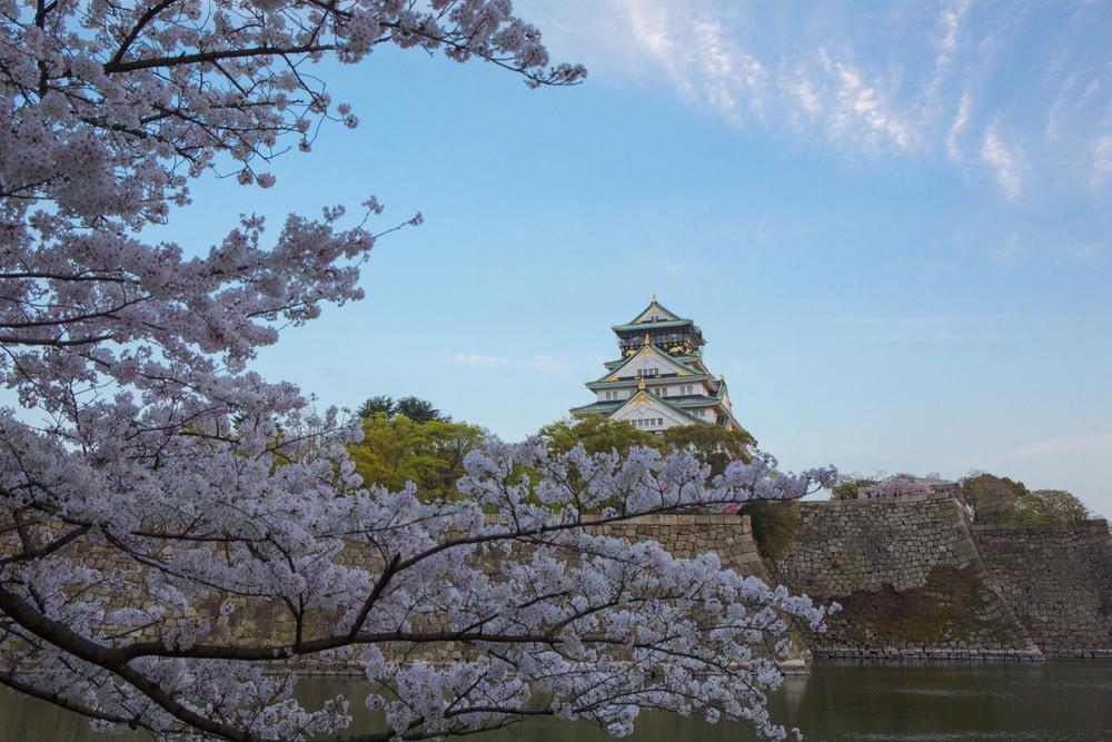 Sakura, Osaka