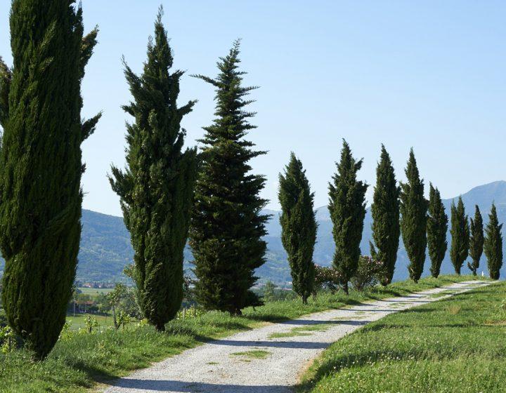 Franciacorta, Lombardia